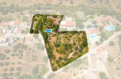 Adorable country villa with mature garden