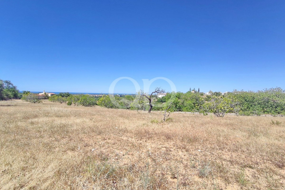 Excellent opportunity to acquire a large piece of land with 2.8 hectares