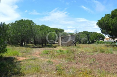 Large plot with a ruin for development