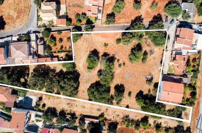 Large plot located in Loule